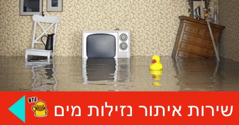 איתור נזילות מים ברווז